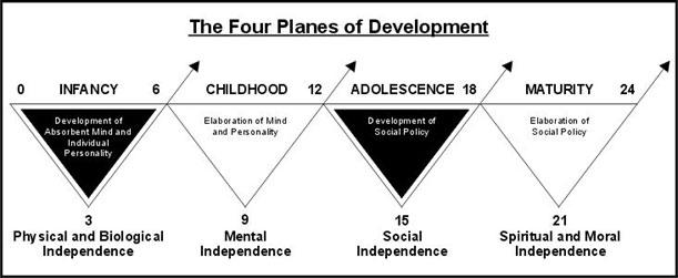 Cum cresc copiii-Principiile Montessori