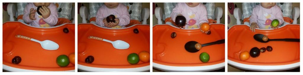 La pescuit de fructe (1)