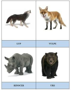 Carduri cu animale 5