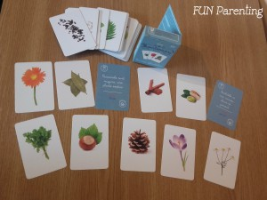 Carti de joc Montessori6