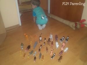 Despre activitati si capacitatea copiilor de a se concentra, in functie de varsta