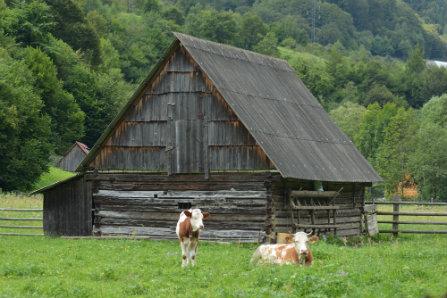 Vacanta in Romania (15)
