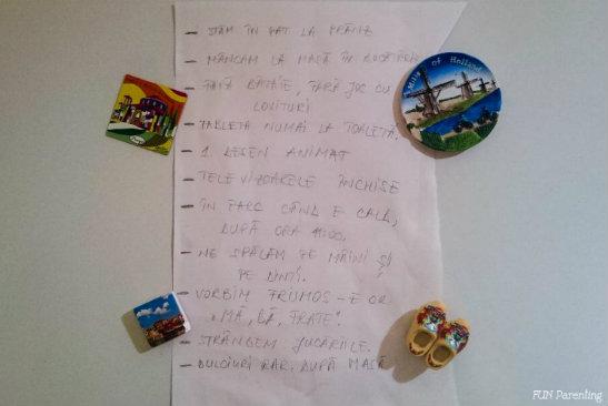 Lista cu reguli de pe frigider