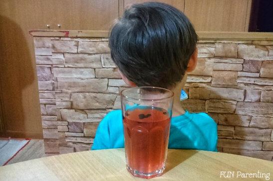Socata (cu sau fara afine) – o reteta simpla, buna si pentru copii